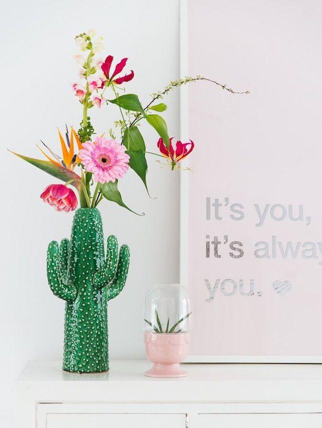 Cactus9